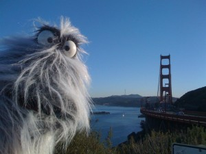 Stanley at the Golden Gate Bridge